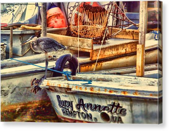 Waiting On Miss Lucy Canvas Print