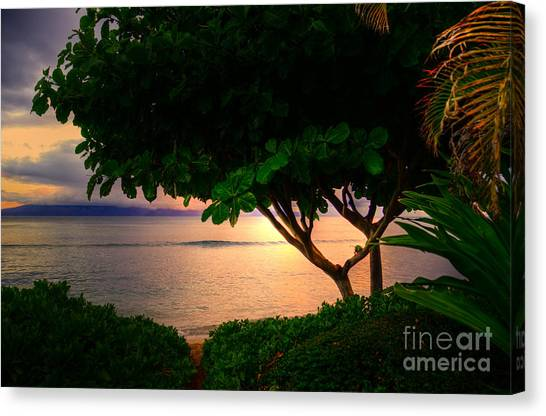 Waking Ka'anapali  Canvas Print by Kelly Wade
