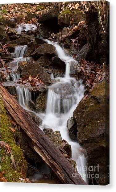 Walden Creek Cascade Canvas Print