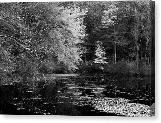 Walden Pond Canvas Print - Walden Pond by Christian Heeb