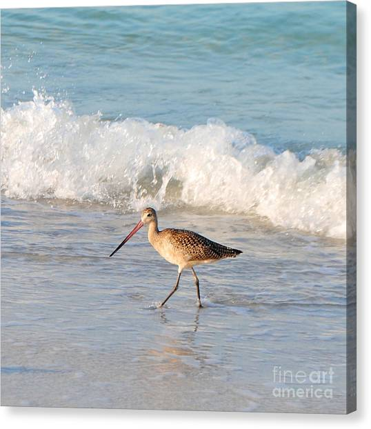 Walk This Way Canvas Print