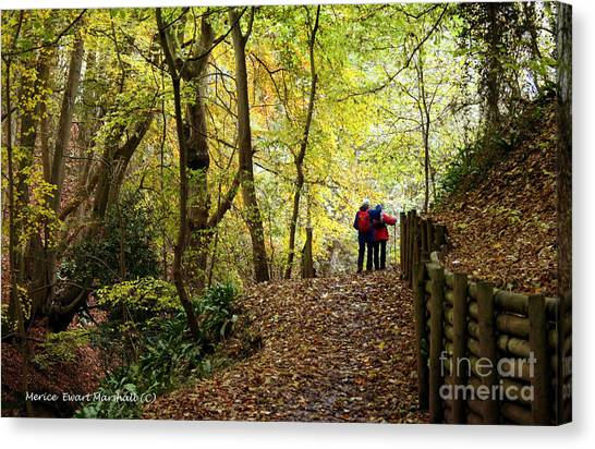 Walkers In The Woods Canvas Print by Merice Ewart