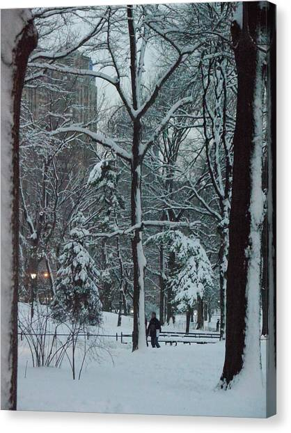 Walking In Snowy Central Park At Dusk Canvas Print