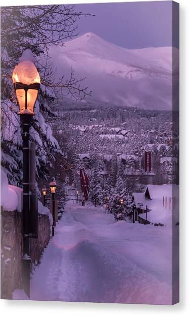 Walking In Winter Canvas Print