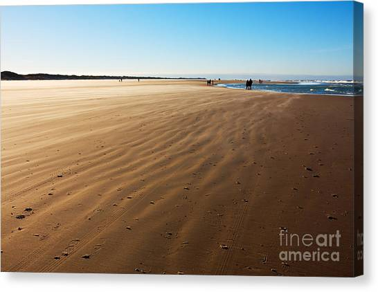 Walking On Windy Beach. Canvas Print