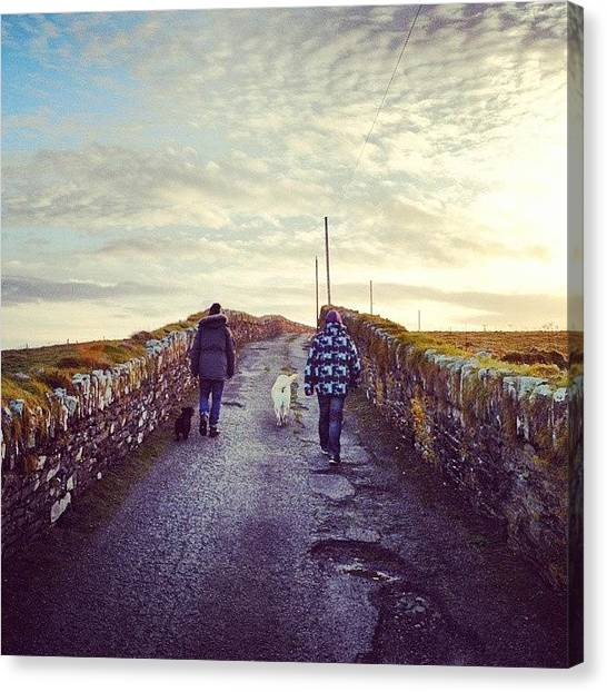 Labrador Retrievers Canvas Print - Walking The Doggies.  by Eoin Milner