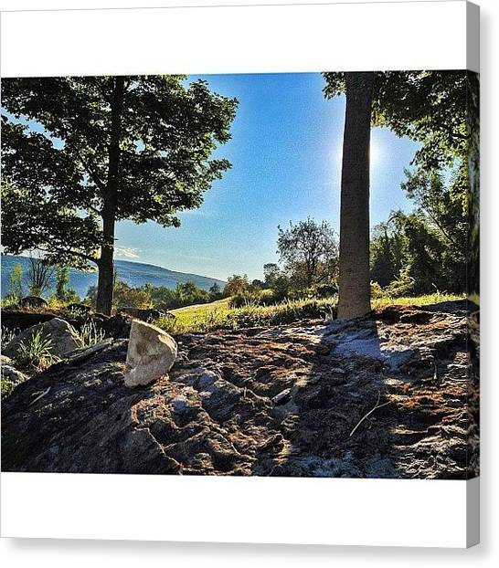 Vermont Canvas Print - Walking The Dogs On A Perfect Morning by James Whaley Cart
