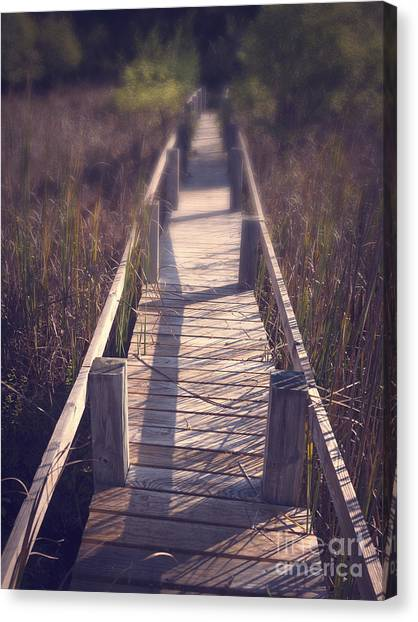 Forest Paths Canvas Print - Walkway Through The Reeds Appalachian Trail by Edward Fielding