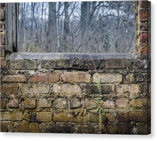 Wall And Window Canvas Print