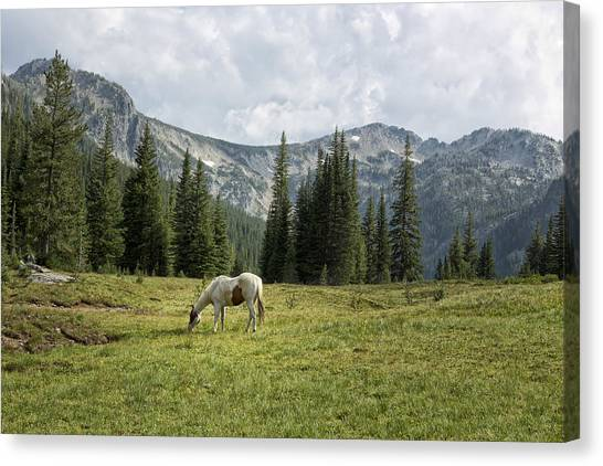 Canvas Print featuring the photograph Wallowas - No. 2 by Belinda Greb