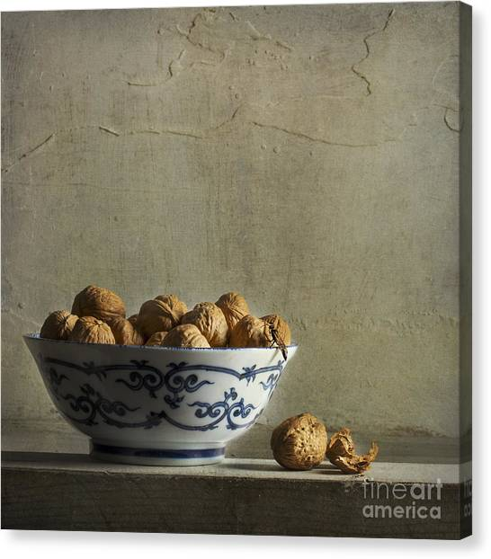 Wasp.insect Canvas Print - Walnuts by Elena Nosyreva