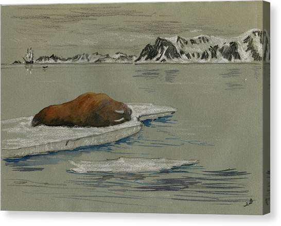 Ivory Canvas Print - Walrus On The Iceberg by Juan  Bosco