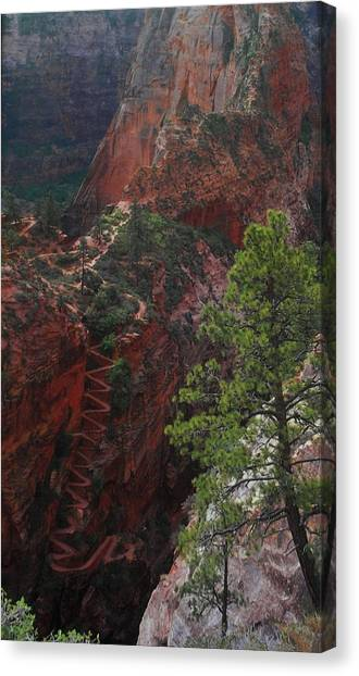 Walters Wiggles Canvas Print