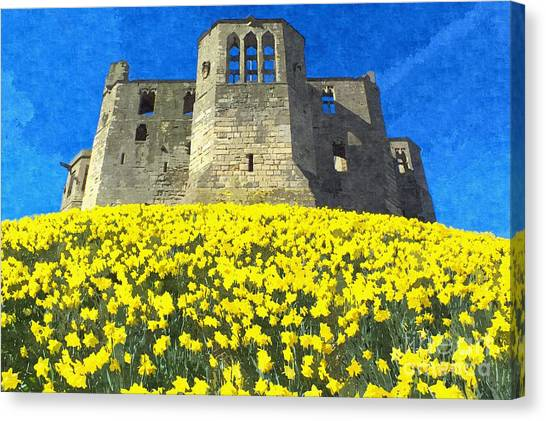 Warkworth Castle Daffodils Photo Art Canvas Print