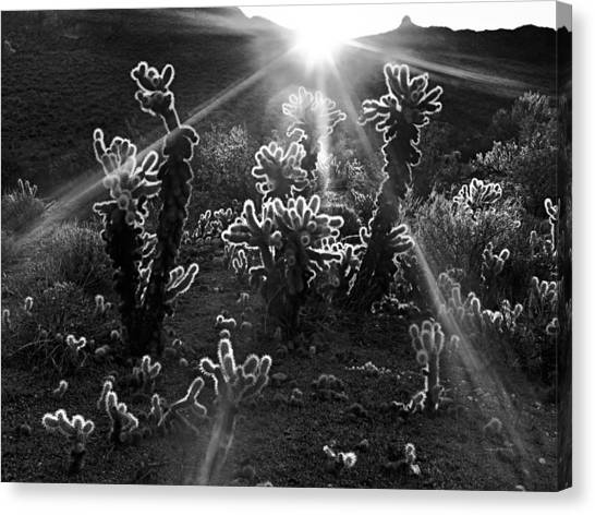 Warm Desert Sunrise Canvas Print by Leland D Howard
