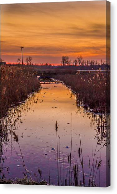 Warm Reflection Canvas Print by Bruno Santos