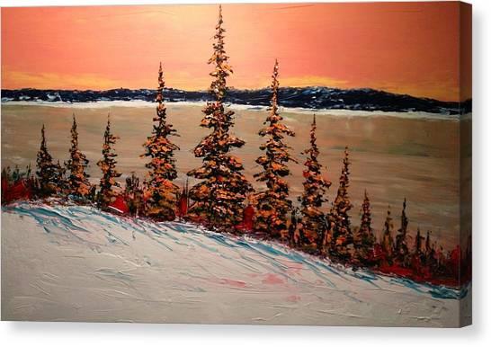 Warm Winter Sky Up North Canvas Print