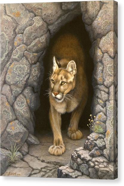 Mountain Caves Canvas Print - Wary Appearance-cougar by Paul Krapf