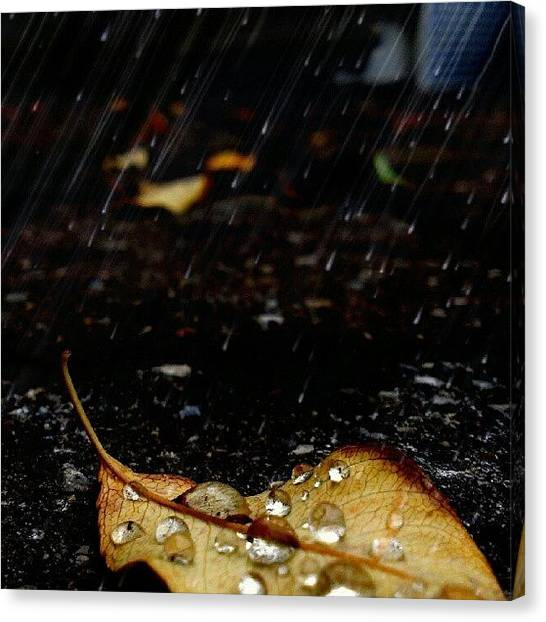 Drops Canvas Print - Wash The Darkness Away by Courtney S