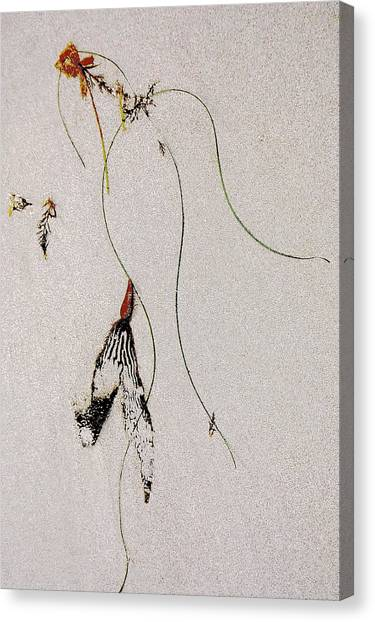 Washed-up Art- 13 Canvas Print