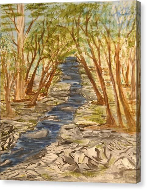 Washington Backcountry Canvas Print