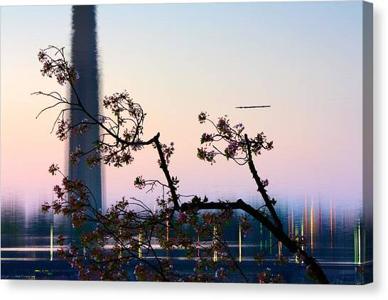 Washington Monument Reflection With Cherry Blossoms Canvas Print