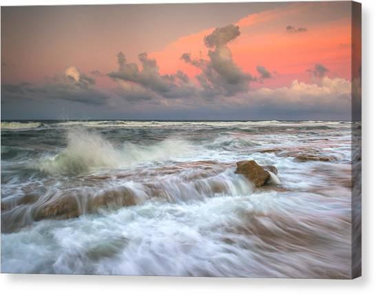 Washington Oaks State Park St. Augustine Fl - The Pastel Sea Canvas Print by Dave Allen