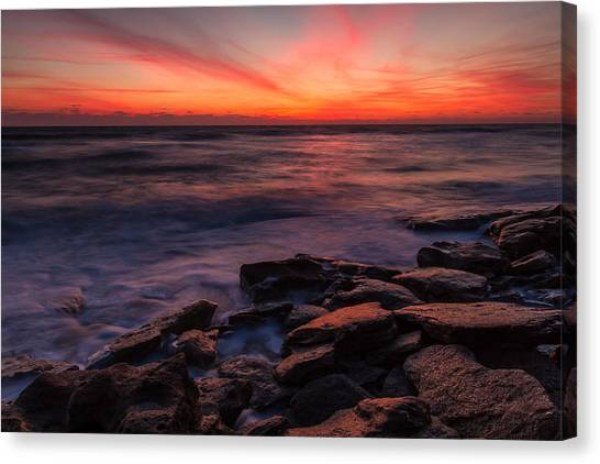 Washington Oaks Winter Sunrise Canvas Print