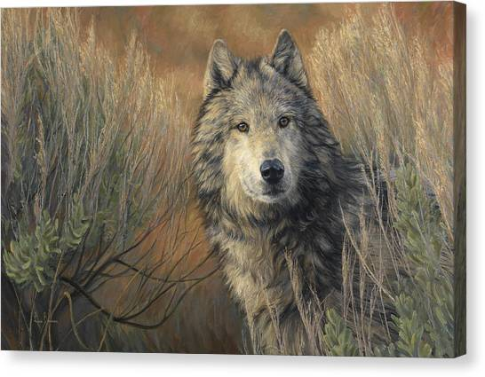 Grey Canvas Print - Watchful by Lucie Bilodeau