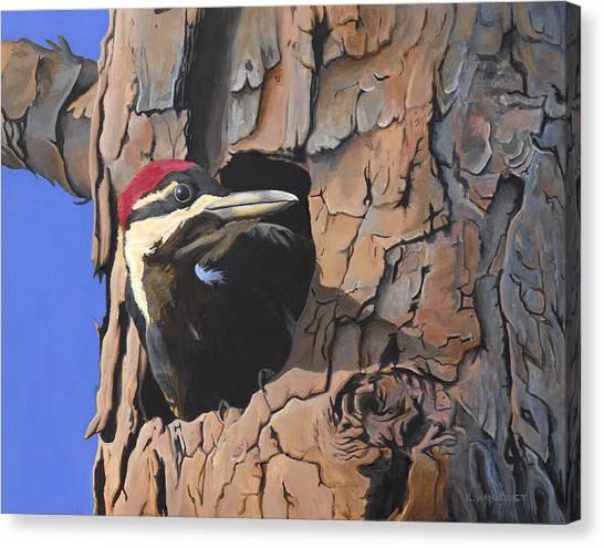 Watchful Woodpecker Canvas Print by Kirsten Wahlquist