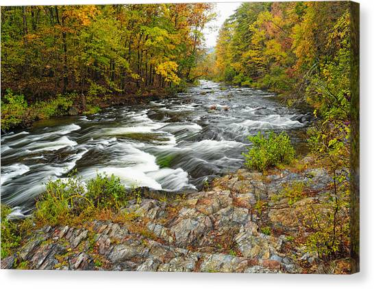Watching It All Go By  At Beaver's Bend Broken Bow Fall  Foliage Oklahoma Canvas Print