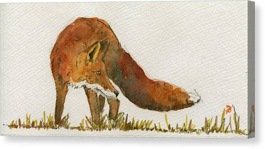 Orange Canvas Print - Watching Red Fox by Juan  Bosco