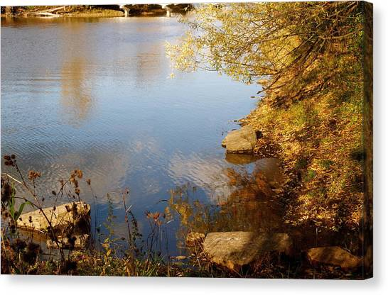 Water Beauty Canvas Print by Jocelyne Choquette
