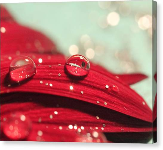 Water Drops And Glitter Canvas Print