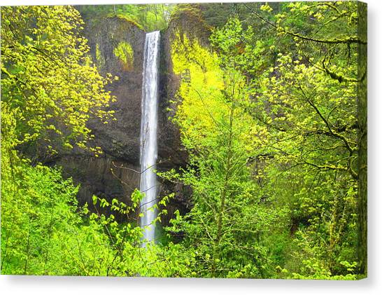Waterfalls Canvas Print - Falls In The Forest by Josias Tomas