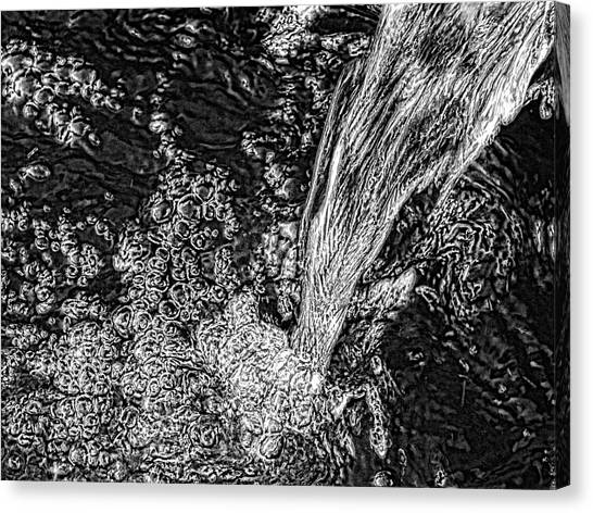 'water Fall' Canvas Print