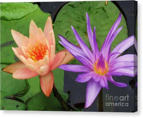 Water Lilies 011 Canvas Print