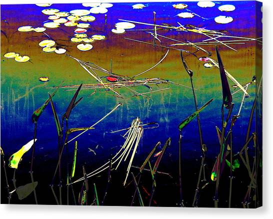 Water Lillies Canvas Print by Carolyn Reinhart