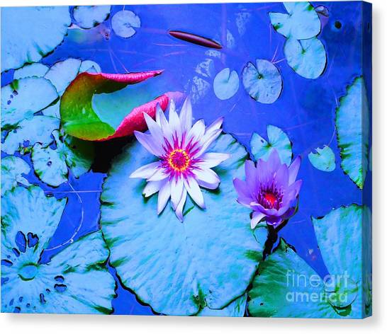 Water Lily I Canvas Print