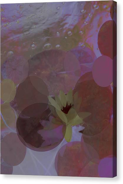 Frank Stella Canvas Print - Water Lily by Linda Dunn