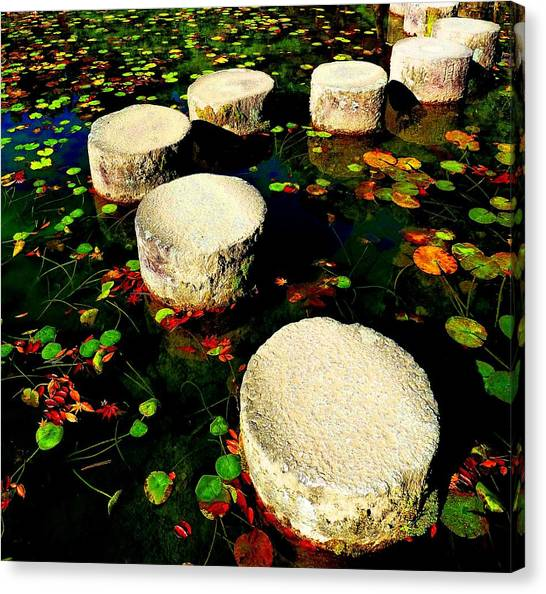 Water Path Canvas Print