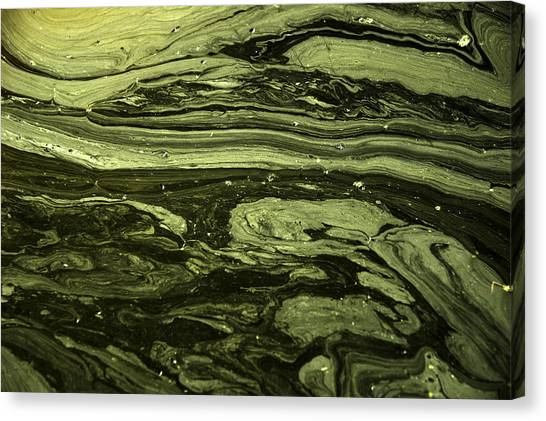 Water Patterns 2 Canvas Print