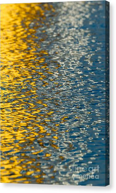 Water Ripples Canvas Print by Kelly Morvant