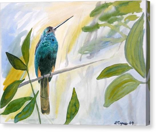 Watercolor - Jacamar In The Rainforest Canvas Print