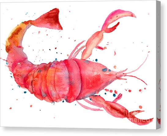 Watercolor Illustration Of Lobster Canvas Print
