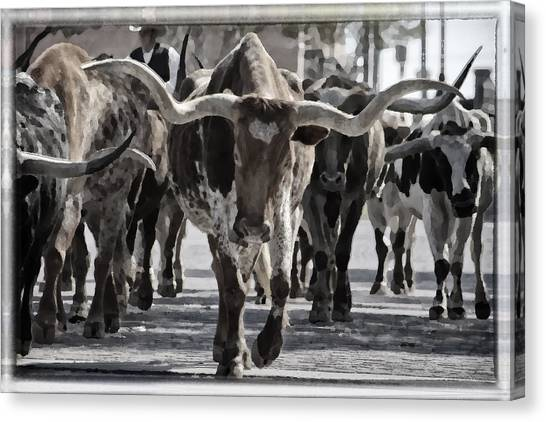 Longhorn Canvas Print - Watercolor Longhorns by Joan Carroll