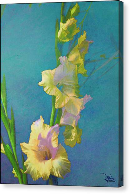 Watercolor Study Of My Garden Gladiolas Canvas Print