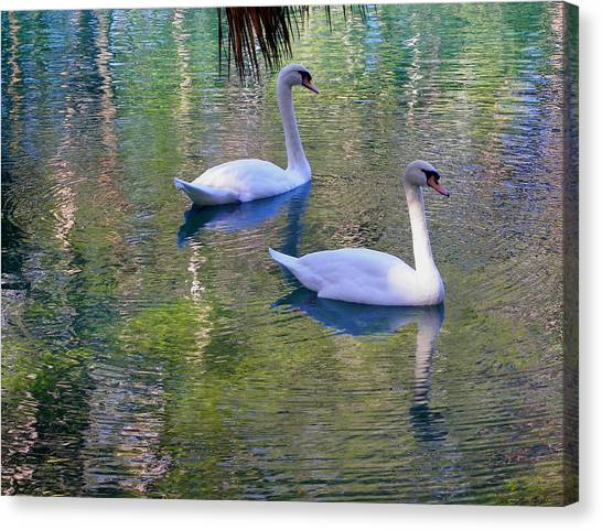 Watercolor Swans Canvas Print