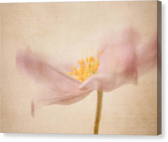 Watercolour Whispers Canvas Print