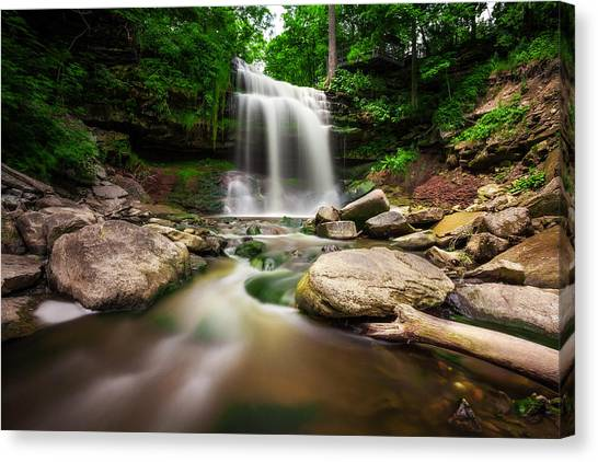 Waterdown Falls - 01 Canvas Print